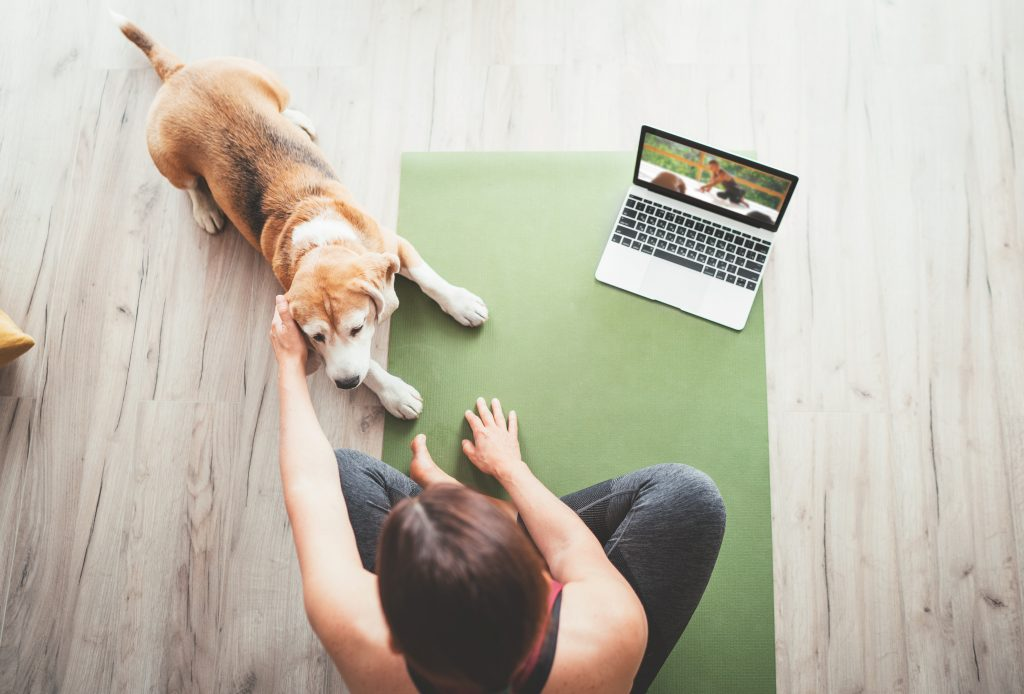 Pilates at home with pets